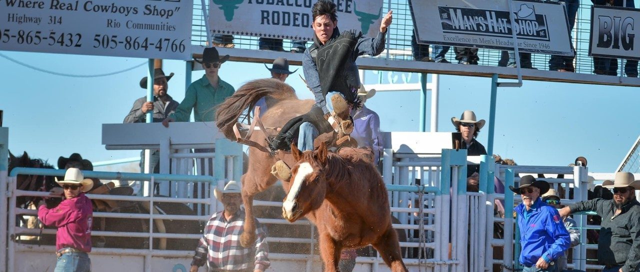 rodeo rider jumping with horse